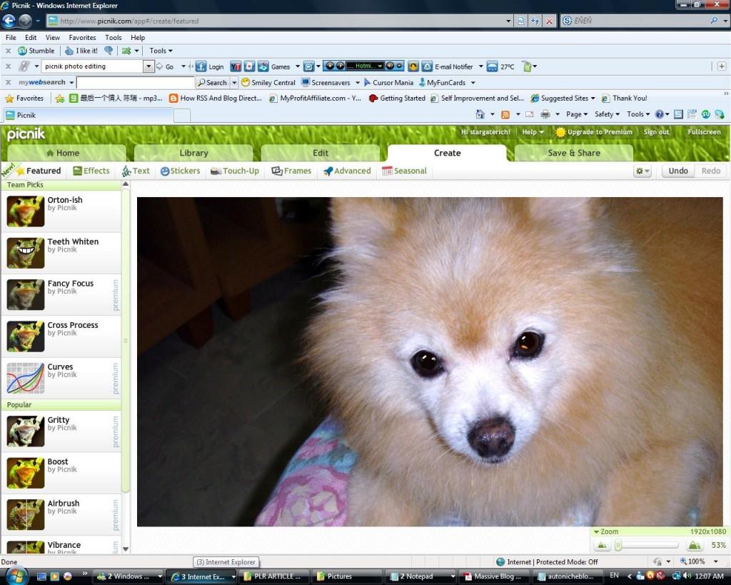 Picnik Online Photo Editor