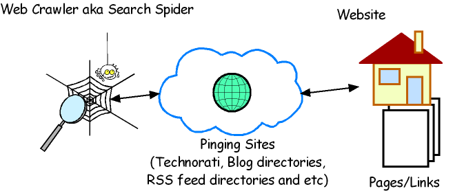 Google Spider crawl website