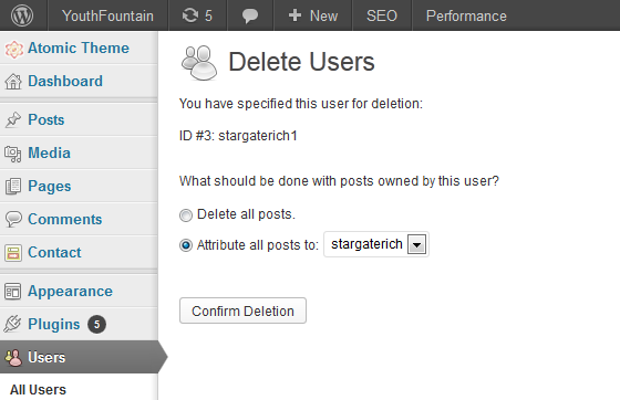 Delete User Admin Account From WordPress